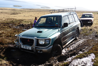 Falkland Island Tours and Sightseeing