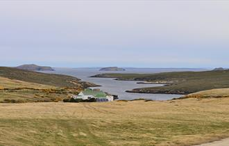 Crooked Inlet_Roy Cove_Falkland Islands