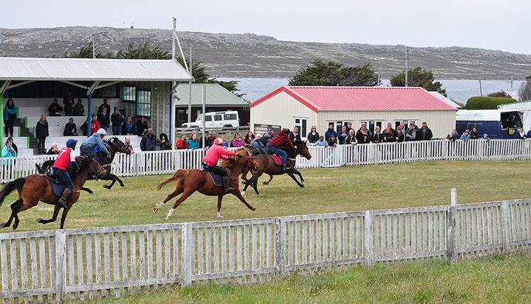 Stanley Sports Race Meeting - What's On