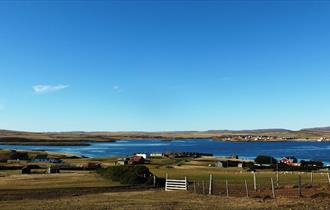 Blank Shanty House_Fox Bay West_Falkland Islands
