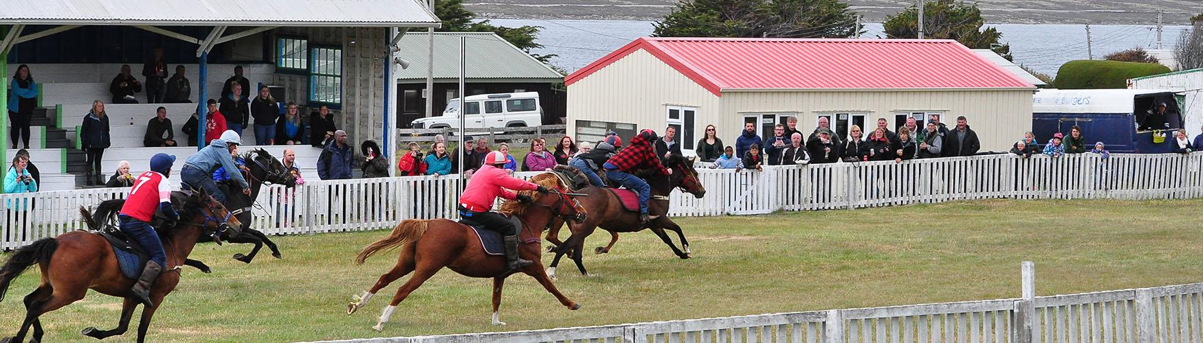 Christmas races at Stanley Racecourse, Falkland Islands