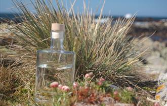 Falkland Islands - Falkland Islands Distillers
