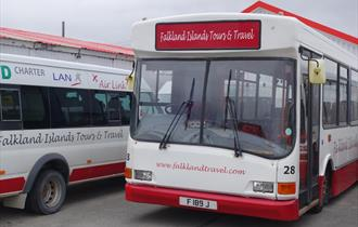 Falkland Islands Tours and Travel