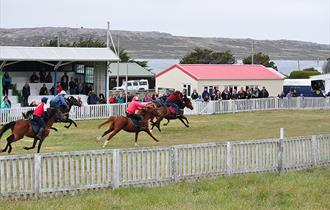 Stanley Race Meeting - Falkland Islands